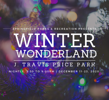 Winter Wonderland News Flash Graphic_Square (1)